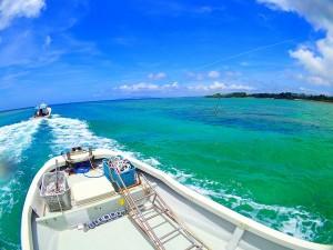 ボートから眺める綺麗な景色