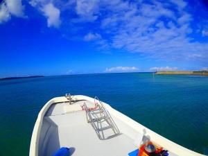 秋はボートが高確率で青の洞窟行けます。