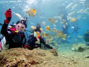 青の洞窟ダイビングで餌付けをしている女性