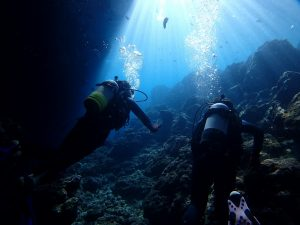 青の洞窟ダイビングの水中がきれいに映っている