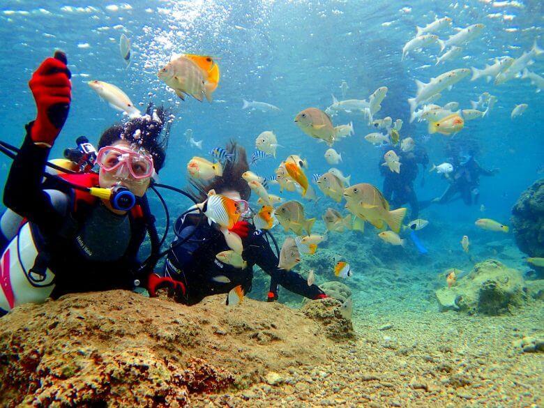 熱帯魚餌付けも無料で体験できます。