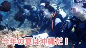 沖縄は7月がおすすめ