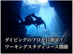沖縄ワーキングスタディ募集