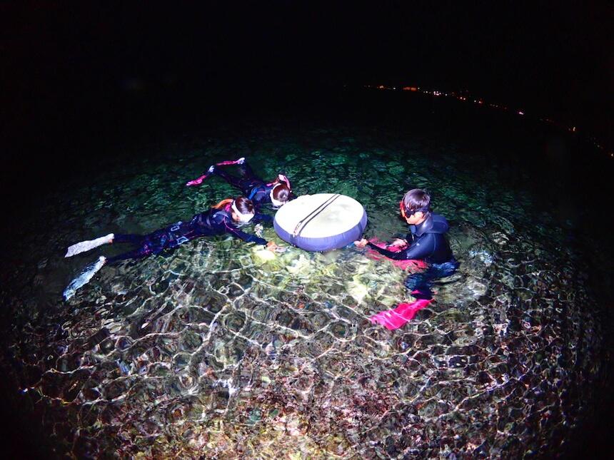 夜の生き物を観察できるナイトシュノーケリング