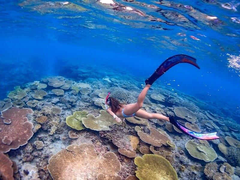 スキンダイビングで沖縄の海を泳ぎ尽くす!