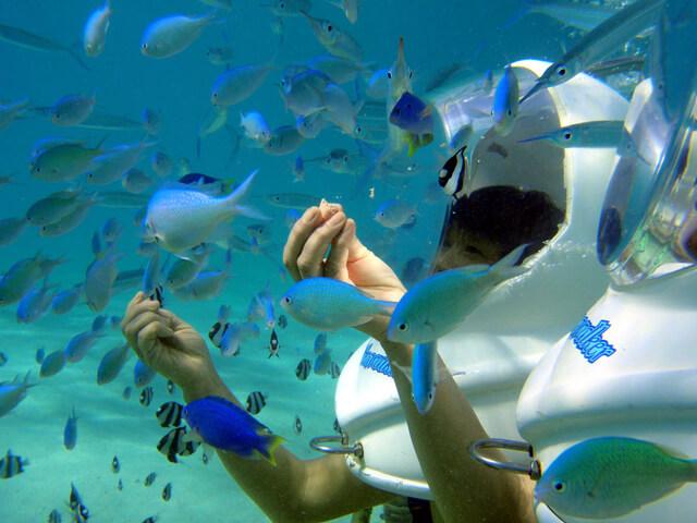 シーウォークも沖縄で人気のアクティビティ