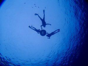 水中から撮ったお客様のシルエット