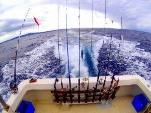 船で大物が釣れる釣り竿