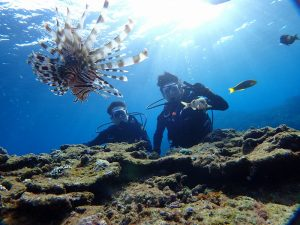 青の洞窟体験ダイビングでミノカサゴと写真を撮る男性
