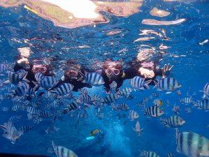 青の洞窟で魚と仲間と記念撮影