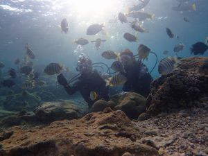 真栄田岬でダイビング魚と記念撮影