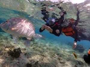 真栄田岬の大きな魚と写真撮影