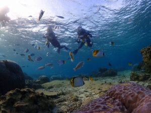 真栄田岬サンゴと魚と記念撮影